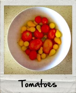 tomatoes24